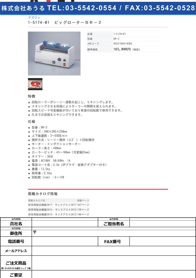 1-5174-01 ビッグローター BR-2