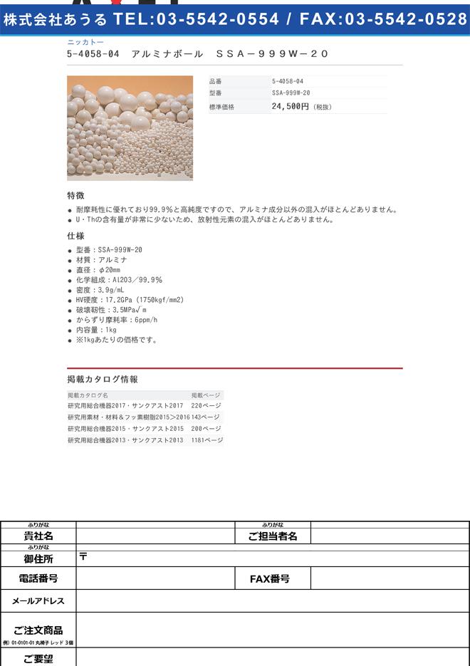 5-4058-04 アルミナボール(高純度) SSA-999W-20